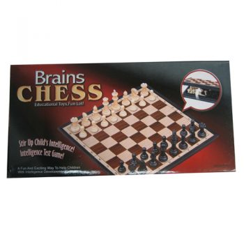 brains magnetic chess set
